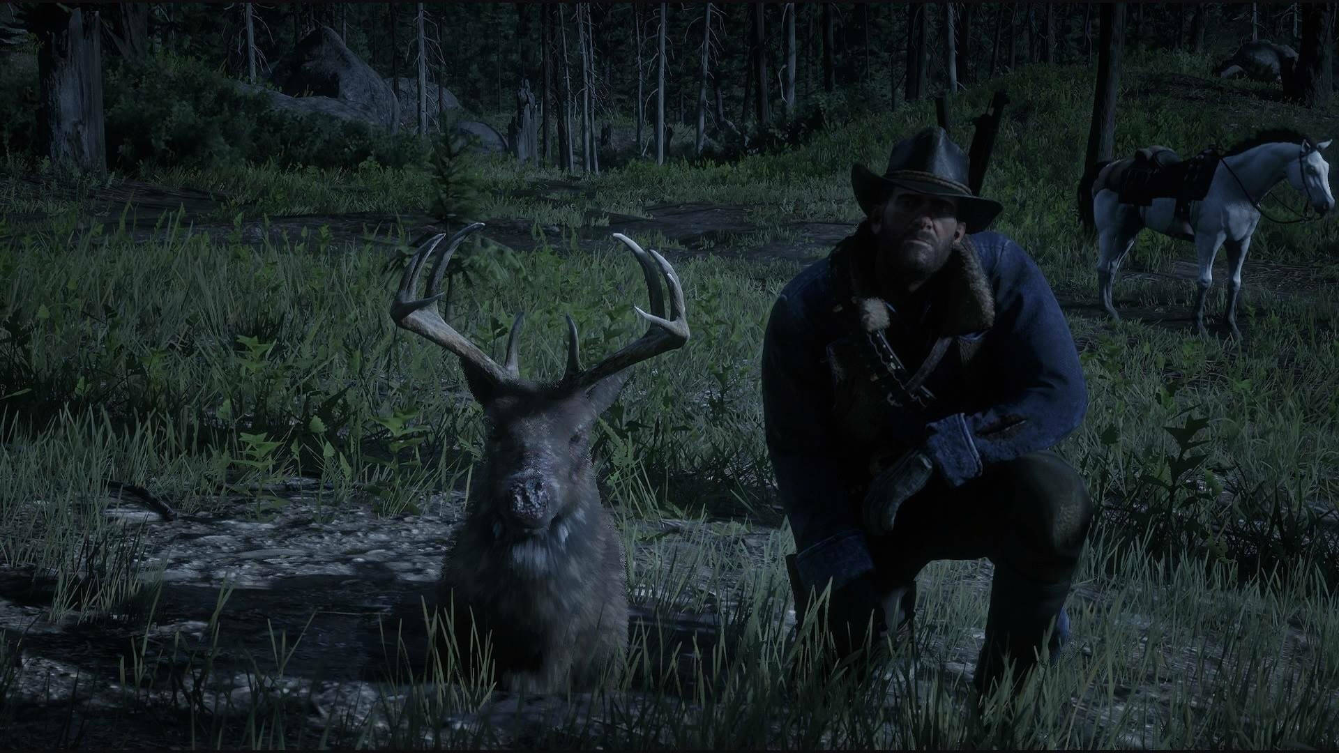 Animals Mysteriously Die Red Dead Redemption 2 Rdr2 Org Forums