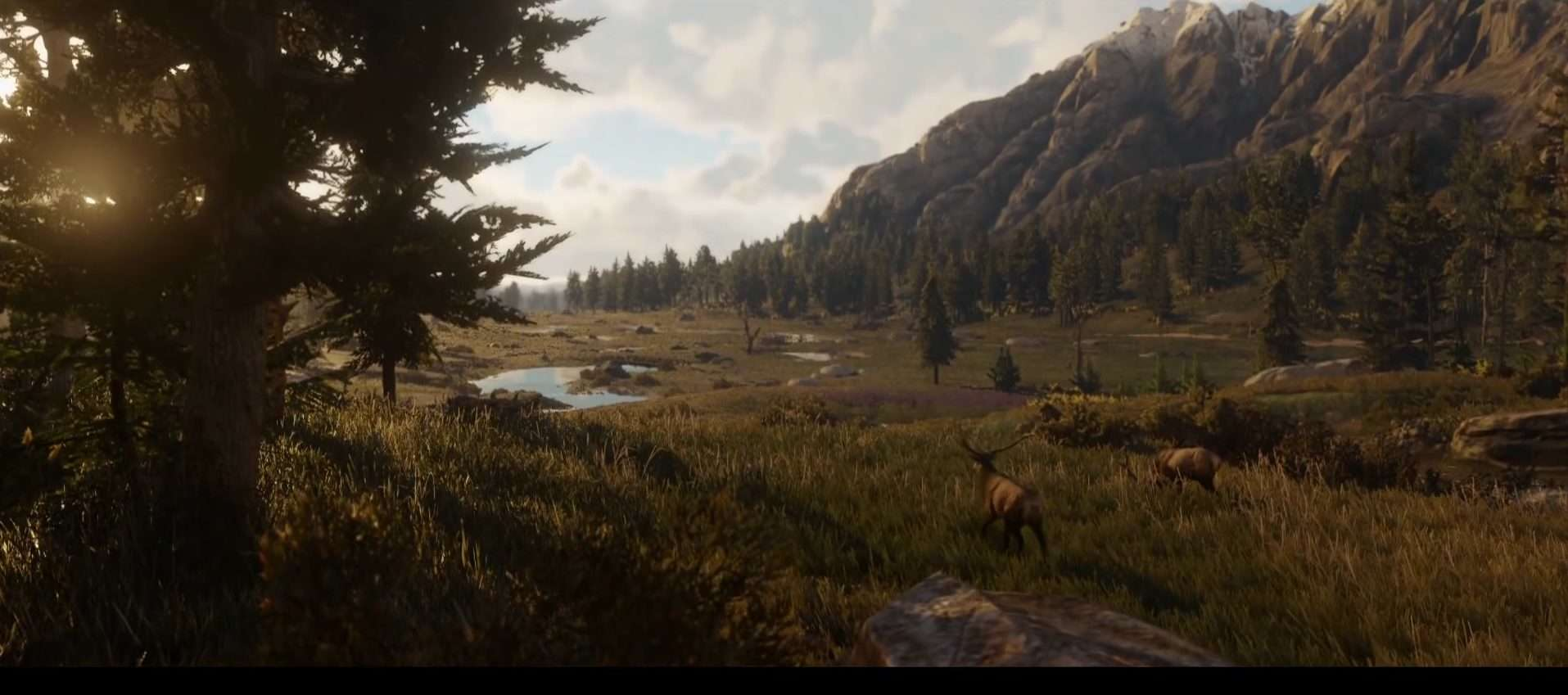 Red Dead 2 World Map.Red Dead Redemption 2 S Map Will Likely Be Massive Rdr2 Org