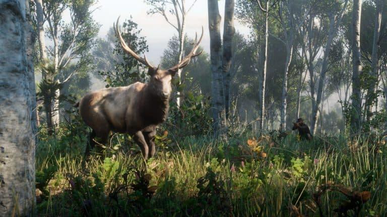 Red Dead Redemption 2 Master Hunter Challenges Guide - RDR2 org
