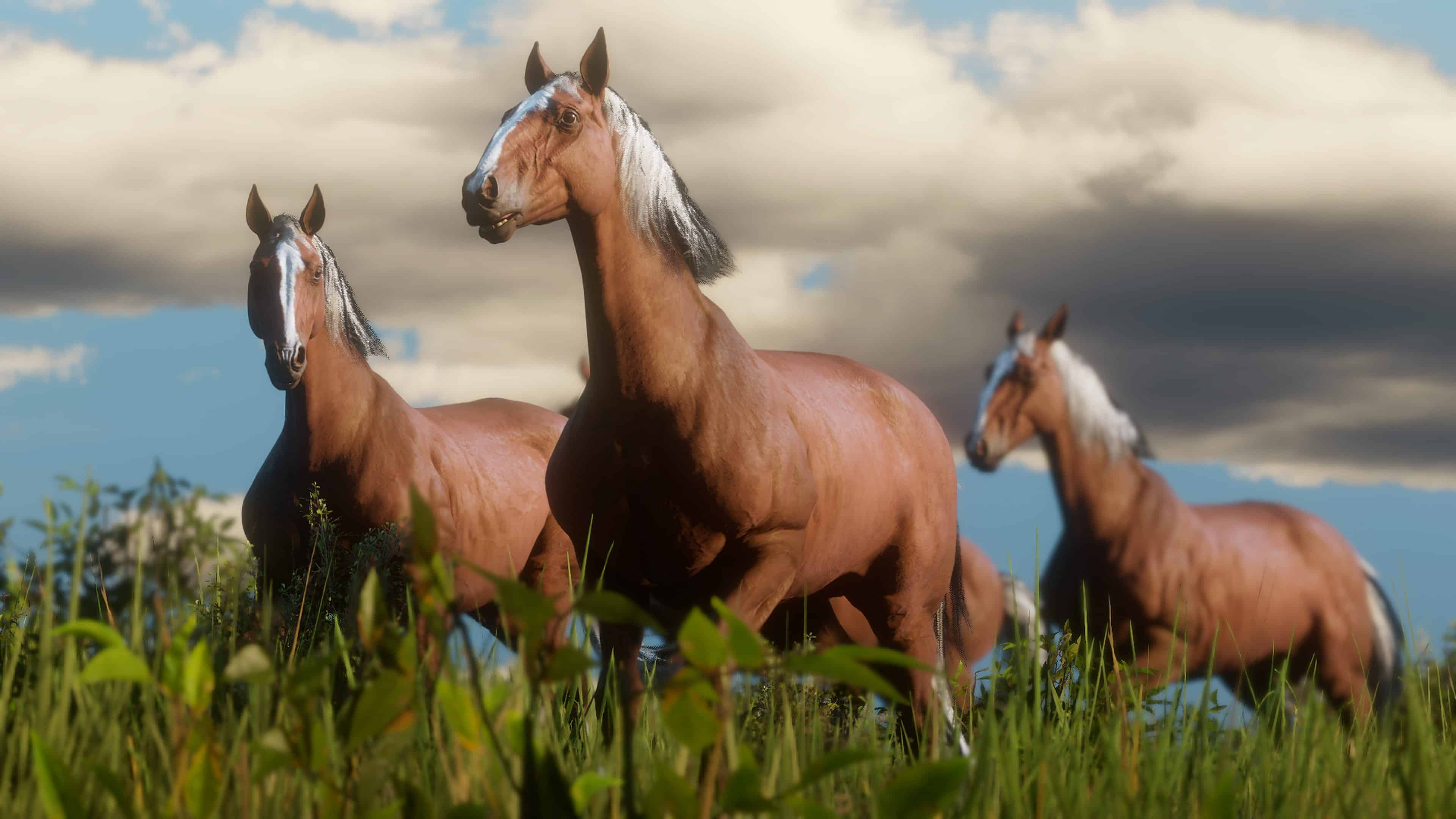 Red Dead Redemption 2 Horse Guide Best Breed Bonding Stables More Rdr2 Org