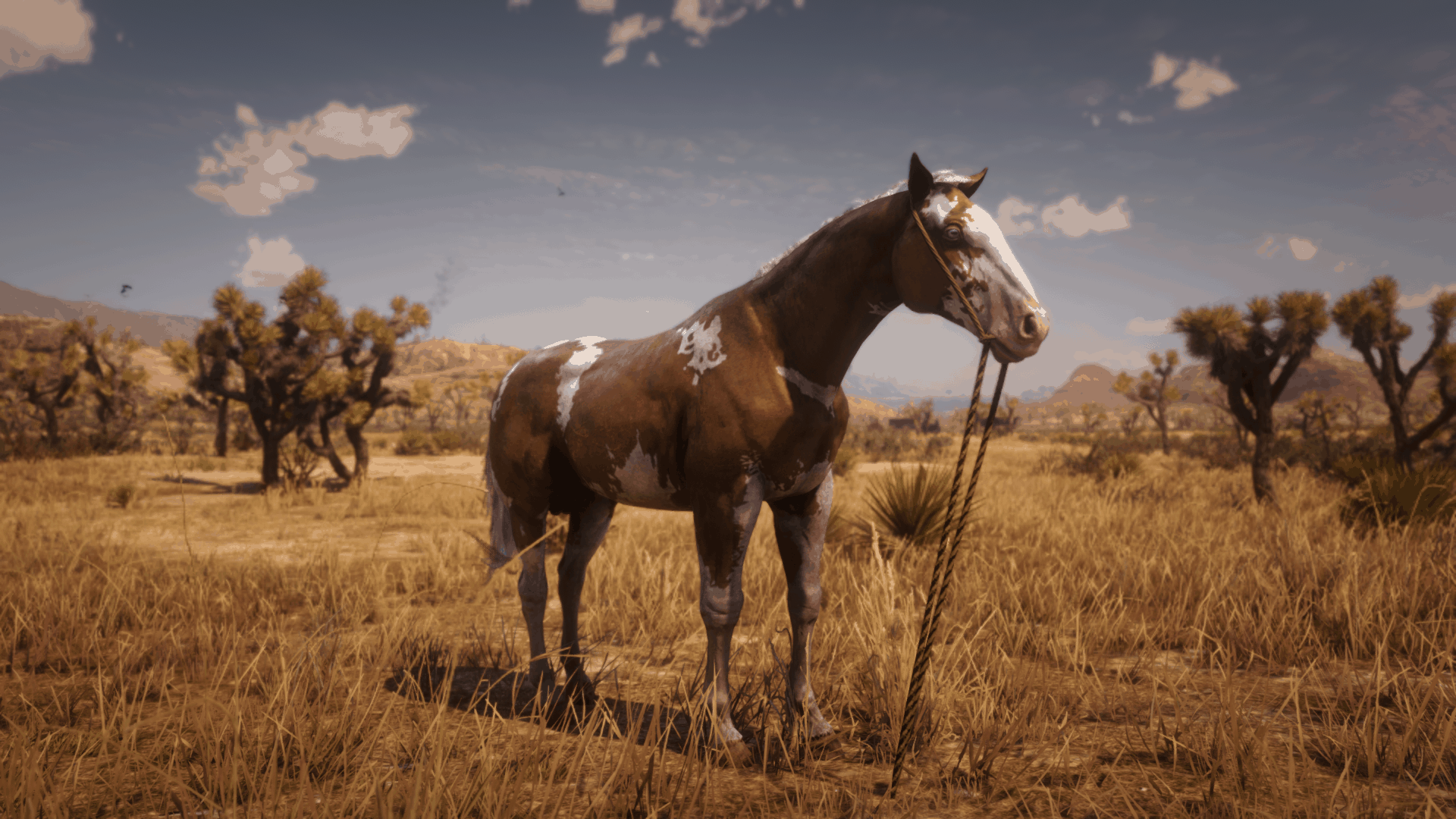 Red Dead Redemption 2 Wild Horse Breeds Locations Guide Rdr2 Org