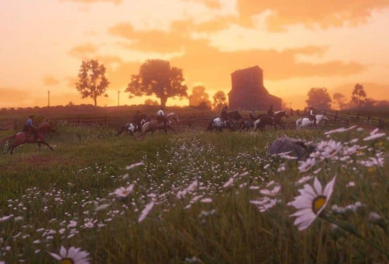 Plants & Herbs Location Guide - RDR2 org